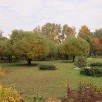 Осень :: раиса Орловская