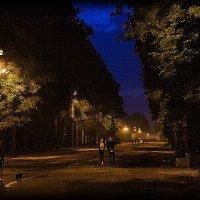 Осень. Вечер. Аллея парка. :: Денис Бажан