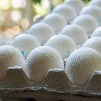 Потные яйца! :: Сергей Леонтьев