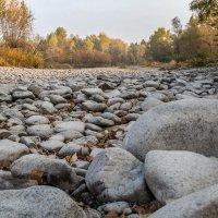 осеннее русло реки :: lev