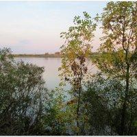 Нежность осеннего вечера... :: Тамара (st.tamara)