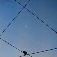 лунная территория... :: navalon M
