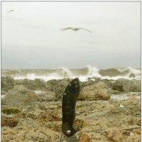 Завтрак на берегу :: Кай-8 (Ярослав) Забелин