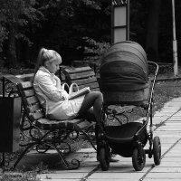 Чтение в парке :: Роман Маркин