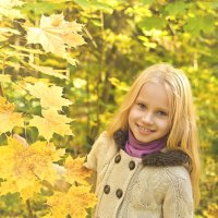 золотая осень :: Марина Ионова