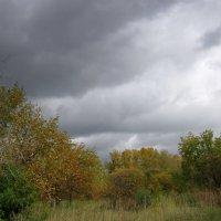 ...уж небо осенью дышало ... :: Мила Бовкун