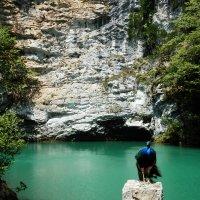 синяя птица на голубом озере :: Татьяна Б.