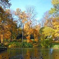 Осенний пруд :: Сергей