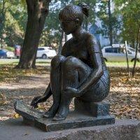 Осень в Александровском парке. :: Владимир Питерский