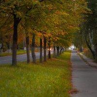 Осенняя пора 2 :: Nikkkos Kas