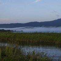 Туман над озером :: Сергей Комаров