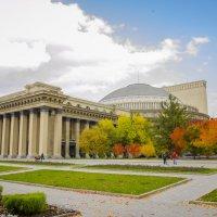 Новосибирск - любимый город! :: Татьяна Степанова