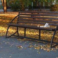 Осень в городе :: Наталия Давыдова
