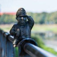 Бравый солдат Швейк :: Сергей Форос