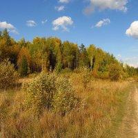 Осень в Абрамцеве IMG_1682 :: Андрей Лукьянов