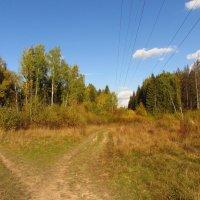 Осень в Абрамцеве IMG_1702 :: Андрей Лукьянов