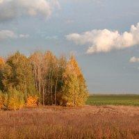Осень - рыжая подруга :: Эркин Ташматов