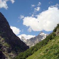 Лето на Кавказе :: Ольга