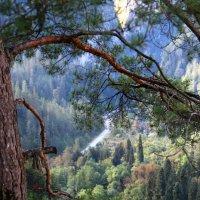Юпшарский каньон :: Tatyana Belova