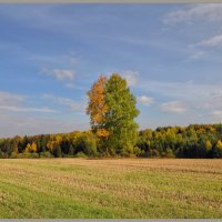 Осенний вальс :: Vadim WadimS67