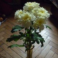 Осенний букет :: Татьяна Юрасова