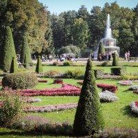 Фотопрогулка в Петергоф. :: Nonna