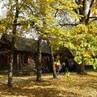 Музей-заповедник «Болдино» (музей А.С.Пушкина) :: Наиля
