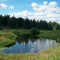 Прогулка вдоль реки Оредеж. :: Виктор Елисеев