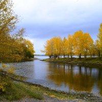 Отражение хмурой  осени :: galina tihonova