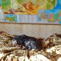 На страже границ :: Валерий Талашов