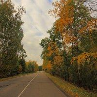 Дороги осени :: Nikita Volkov
