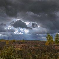 Осень-непогодушка... :: Михаил (Skipper A.M.)