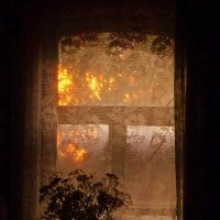 """""""Вся комната  янтарным блеском озарена..."""" :: veilins veilins"""