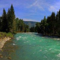 Река Кучерла. :: Михаил Баевский