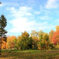 Осенний пейзаж :: Елена Кознова