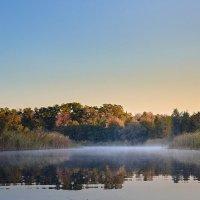 Осеннее утро на реке :: Денис Варава
