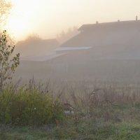 Туманное утро... :: mv12345 элиан