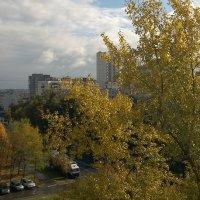 И из моего окошка видно осень,хоть немножко:) :: анна нестерова