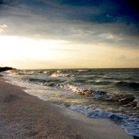 Таганрогский залив :: Ольга Воронина