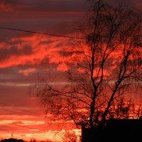 Небо после захода солнца :: Николай Сапегин