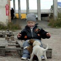 маленький мальчик :: Виктория Чуб