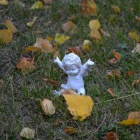Вот Осень запела романс... :: Таня Фиалка