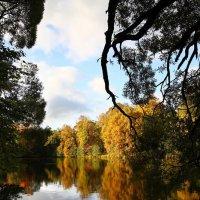 Осенний пейзаж :: Ivan Zaytcev