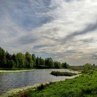 Лесное озеро :: Александр Иванов