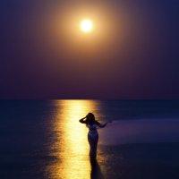 Лунная дорожка :: Вера Бережная