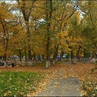Осенний парк... :: Александр Смольников