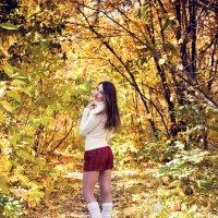 Осень :: Алексей Петренко
