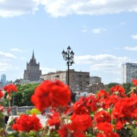 Москва цветёт :: Жанна Литуева