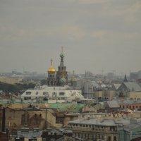 Вид на город со смотровой площадки Исаакиевского собора :: Светлана Шарафутдинова