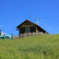 Домик на окраине села. :: Galina S*